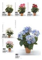 Plants & Pots 2015 old - Page 7