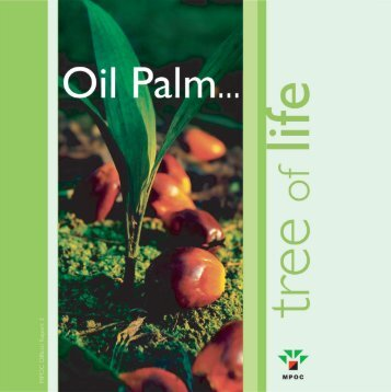 Print Layout 1 - American Palm Oil Council