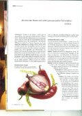 Liebes Hunger - Page 3