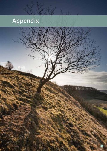 Appendix 1 - Cotswolds Area of Outstanding Natural Beauty
