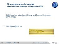 Multiphase flow laboratory at Energy and Process ... - Aker Solutions