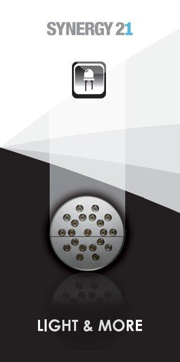 S21 Leporello 06-10 - Synergy 21