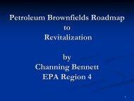 Petroleum Brownfields Roadmap to Revitalization