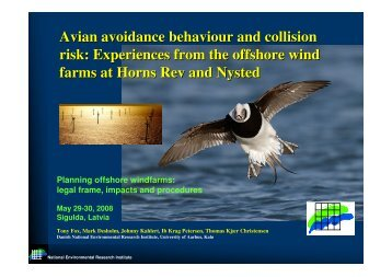 Experiences from the offshore wind farms at Horns Rev and Nysted