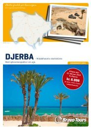 DjerbA - Bornholms Tidende