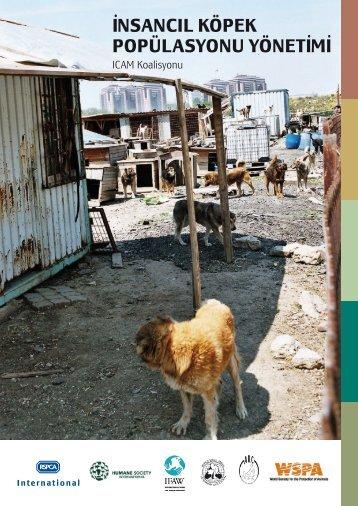 I˙nsancIl KöpeK popülasyonu yönetI˙mI˙ - ICAM - International ...