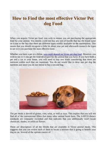 How to Find the most effective Victor Pet dog Food