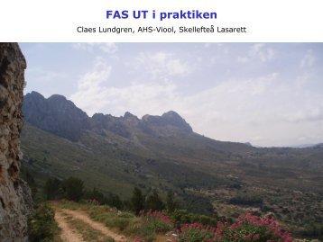 FAS UT i praktiken