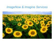 IST DS Imagine Demo UPDATED - Information Services and ...