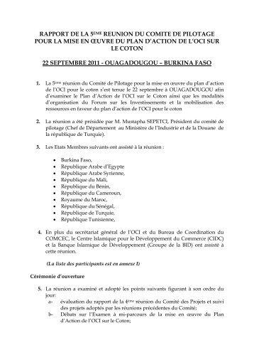 RAPPORT DE LA 5EME REUNION DU COMITE DE ... - ICDT