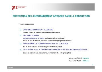 Protection de l'environnement intégrée dans la ... - GD MAROC