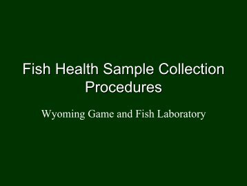 Fish Health Sample Commection Procedures - Wyoming Game ...