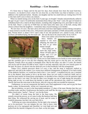 Ramblings - Cow Dynamics
