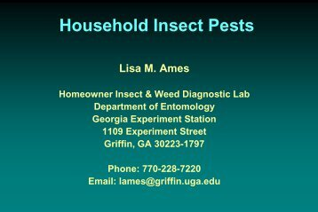 Household Insect Pests