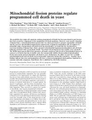 Mitochondrial fission proteins regulate programmed cell death in yeast