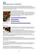 Last ned prosjektrapport (pdf) - Nysgjerrigpermetoden.no - Page 6