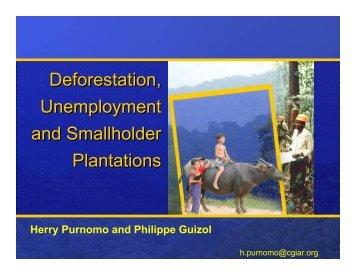 Deforestation, Unemployment and Smallholder Plantations ...