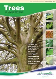 Trees on development sites SPG - South Gloucestershire Council