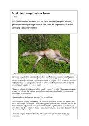 Dood dier brengt natuur leven - Dood Doet Leven