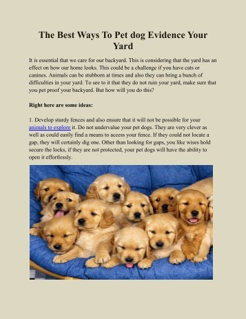 The Best Ways To Pet dog Evidence Your Yard