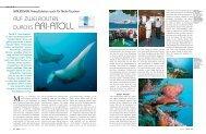 MUSTER 3/4/09 (Page 1 - 2) - Atoll Explorer Maldives