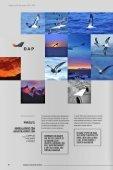 REVISTA DAP AVENTURA 2014-2015 - Page 6