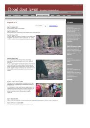 dagboek van dode dieren Groenlanden ree nr1 - Dood Doet Leven