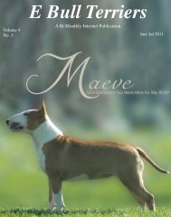 July Edition in PDF - E Bullterriers