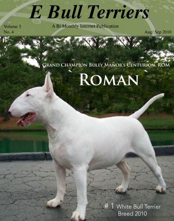 Download Aug/ Sept Edition in PDF - E Bullterriers