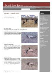 dagboek van dode dieren Groenlanden ree nr4 - Dood Doet Leven