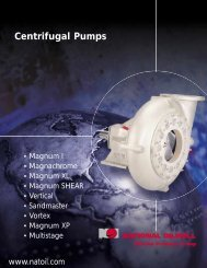 Centrifugal Pumps - Rainey Engineering, Inc