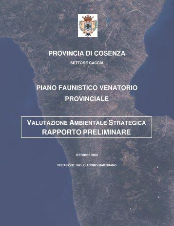 RAPPORTO PRELIMINARE - Regione Calabria
