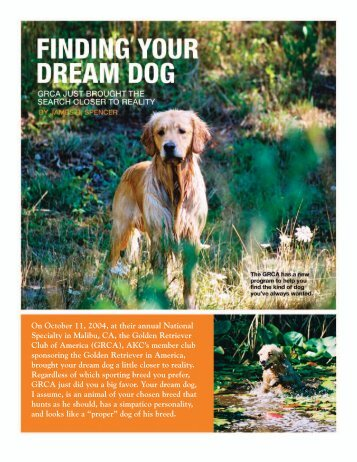 Finding Your Dream Dog - Golden Retriever Club of America