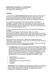 001_Webamb balassy ped_Aufloesung