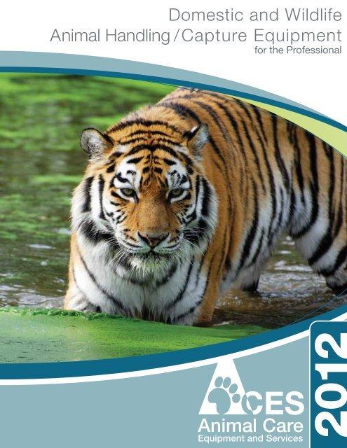 Orange Bengal Tigers Satin Chrome Plated Metal Money Clip