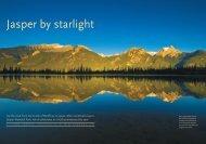 Jasper by starlight - Robert L. Peters