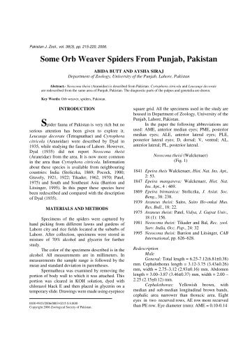 Some Orb Weaver Spiders From Punjab, Pakistan - Zsp.com.pk