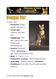 Bengal Cat in Indonesian - Pictures of Cats