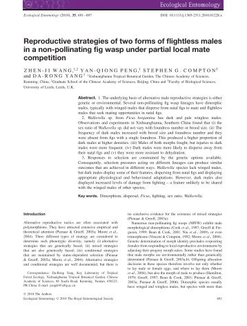 Reproductive strategies of two forms of flightless males in a non ...