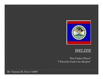 Belize (PDF) - Stetson University College of Law