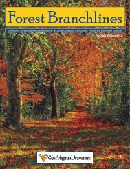 Fall 2008 Volume XVII - WVU Division of Forestry and Natural ...