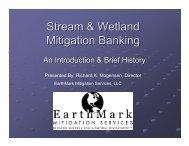 Stream & Wetland Mitigation Banking - Canaan Valley Institute