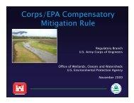 Corps/EPA Compensatory Mitigation Rule