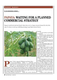 PAPAYA: WAITING FOR A PLANNED COMMERCIAL STRATEGY