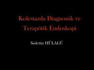 Kolestazda Diagnostik ve Terapötik Endoskopi - Prof. Dr. Sadettin ...