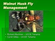 Walnut Husk Fly Management-2012 Walnut Day