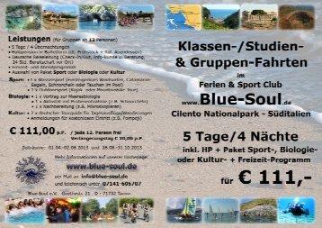 Flyer - Klassen-, Studien - Blue Soul