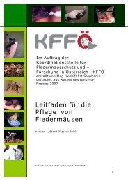 Leitfaden für die Pflege von Fledermäusen - Tierschutzverein ...
