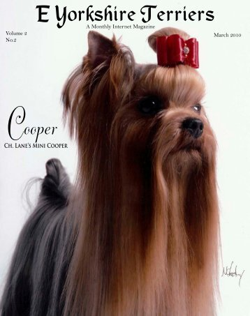 Download March Edition in PDF Format - E Yorkshire Terriers