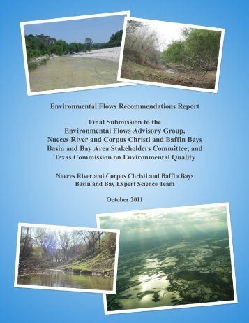 Nueces BBEST Environmental Flows Recommendation Repor